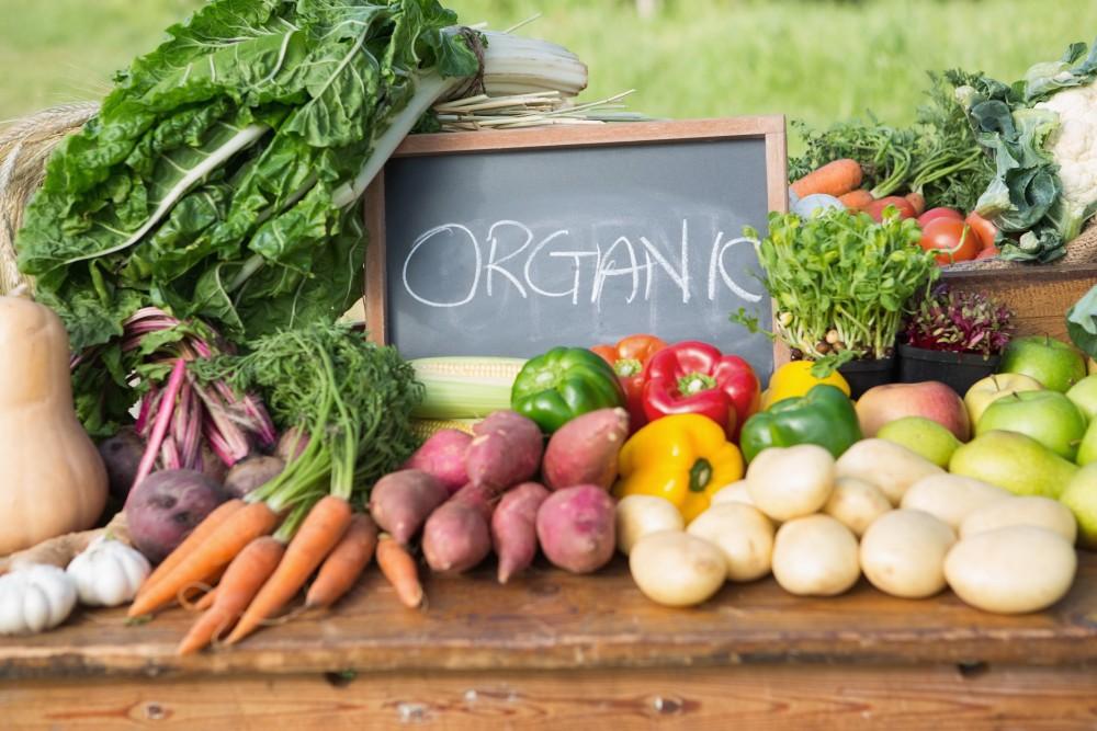 Kết quả hình ảnh cho kinh doanh rau hữu cơ