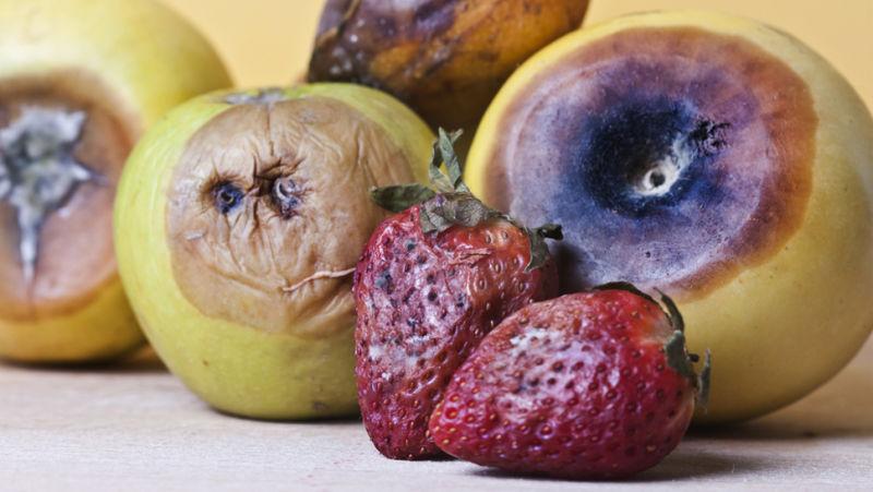 phần mềm quản lí nhà hàng CitiPos giúp giảm lượng thức ăn bị lãng phí
